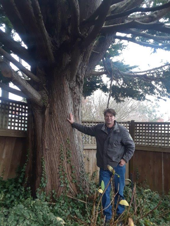 Jim Folger standing at the base of a 45 in. diameter at breast height monster Leyland Cypress tree.