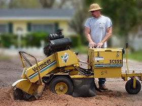 cfc3e61e-stump-grinding