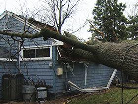 d81147e1-storm-damage-prevention